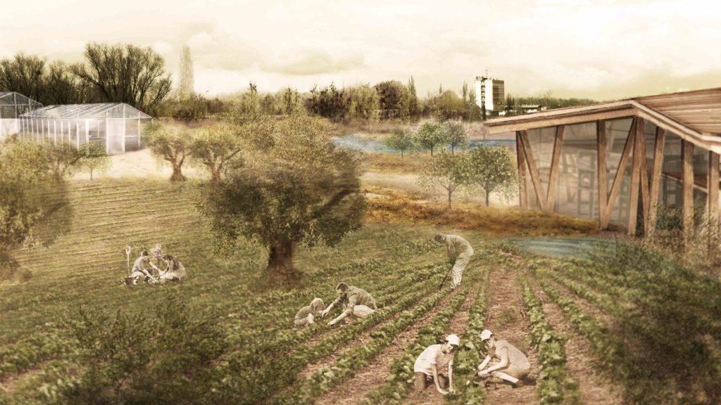 Urban Agricultural Park in Votanikos
