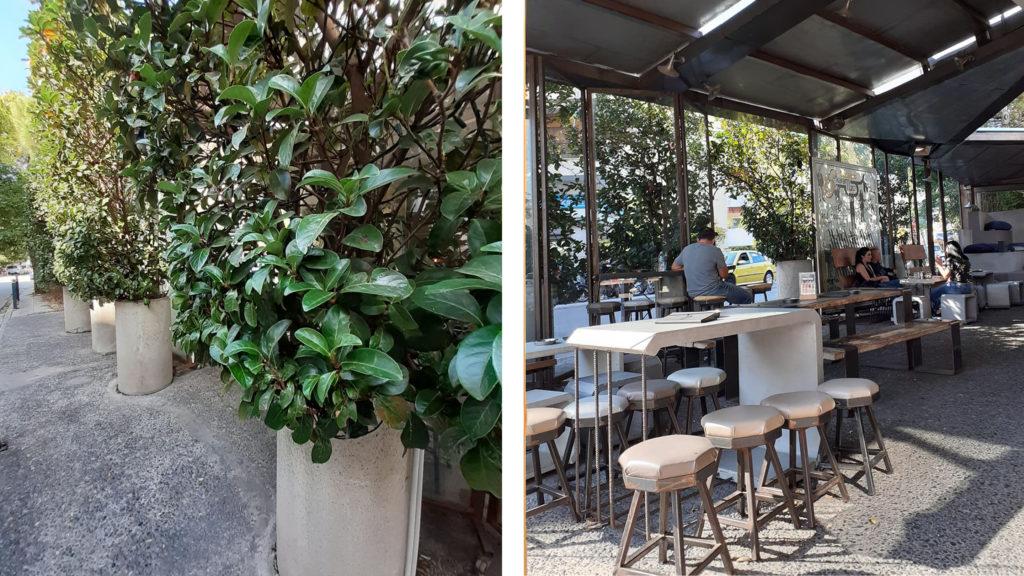 Karamuza Bar Garden